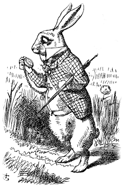 Alice's Adventures in Wonderland (1865); illustrated by John Tenniel